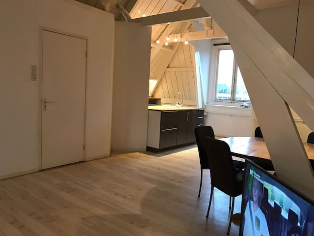 Nice loft in Old Jewish center of Amsterdam - Amsterdam - Suite degli ospiti