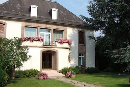 VILLA LUXUEUSE VOSGES DU NORD - Diemeringen - Dům