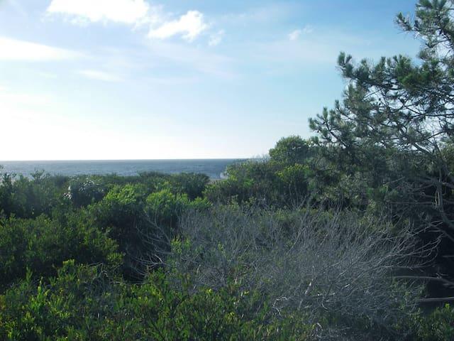 Posada Anacahuita, Rocha, Uruguay 2