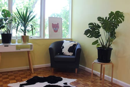 ENTIRE APARTMENT Cosy and bright  in St Kilda East