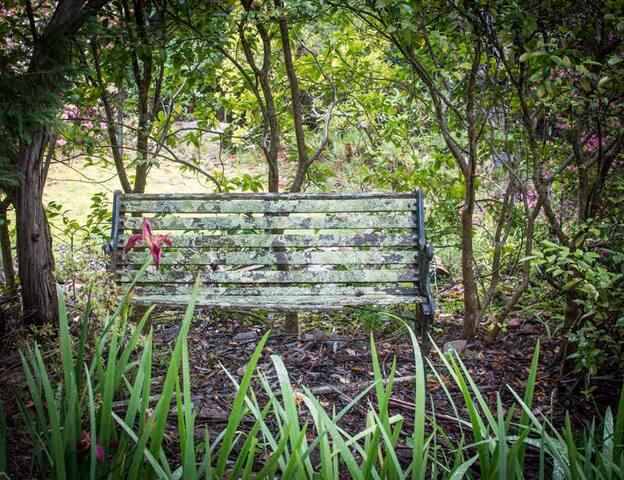 A quiet seat in the garden