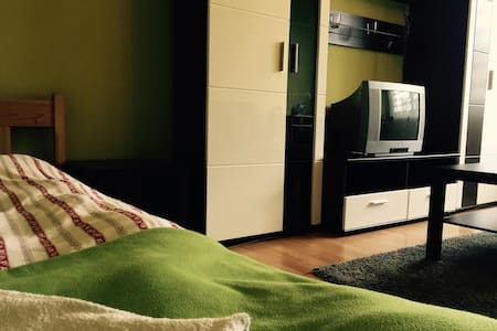 Whole cozy flat next to the centre! - Poznan