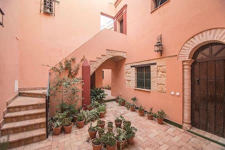 Casa tipica, totalmente reformada, todo nuevo. - Carmona