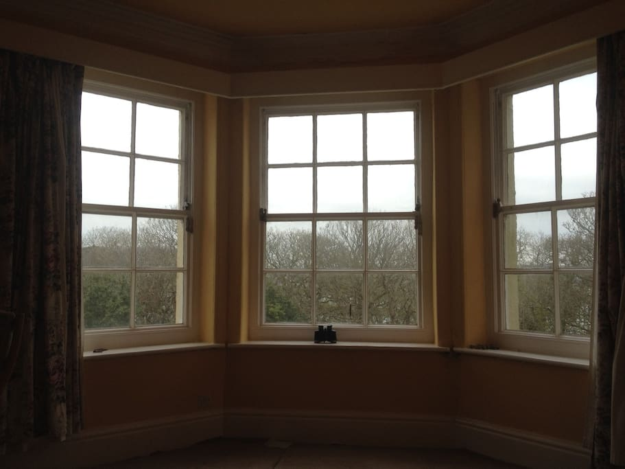 Through the bay windows before the trees are in leaf