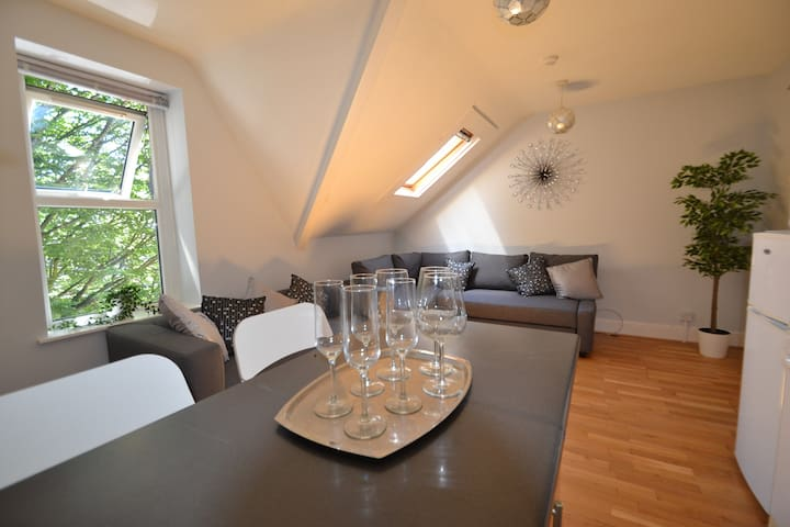 Loft apartment nr shops & bars, 20min walk to City