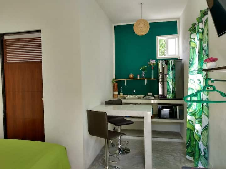 C. Green studio Cancun downtown, A/C, market 28