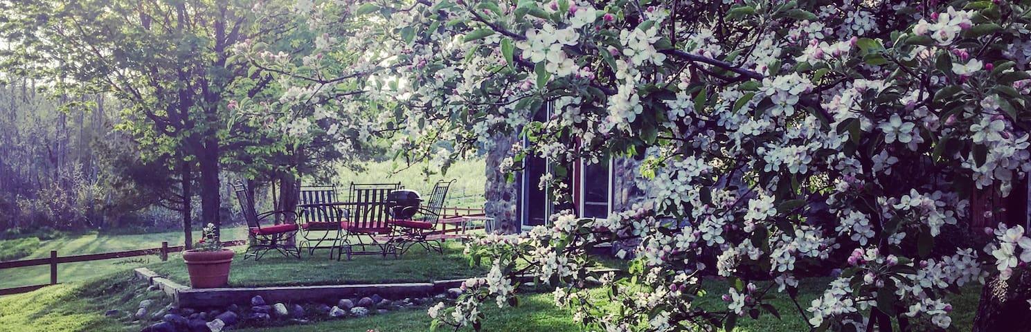 Historic Stone Cottage at Century Farm