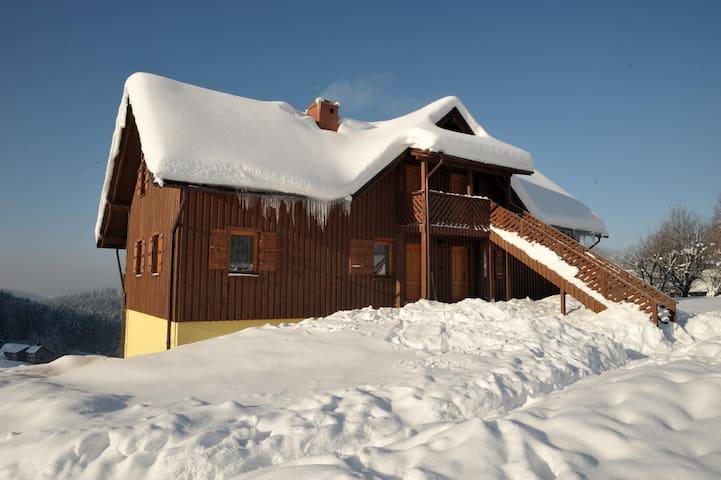 Apartament - Jaworzynka - Apartment