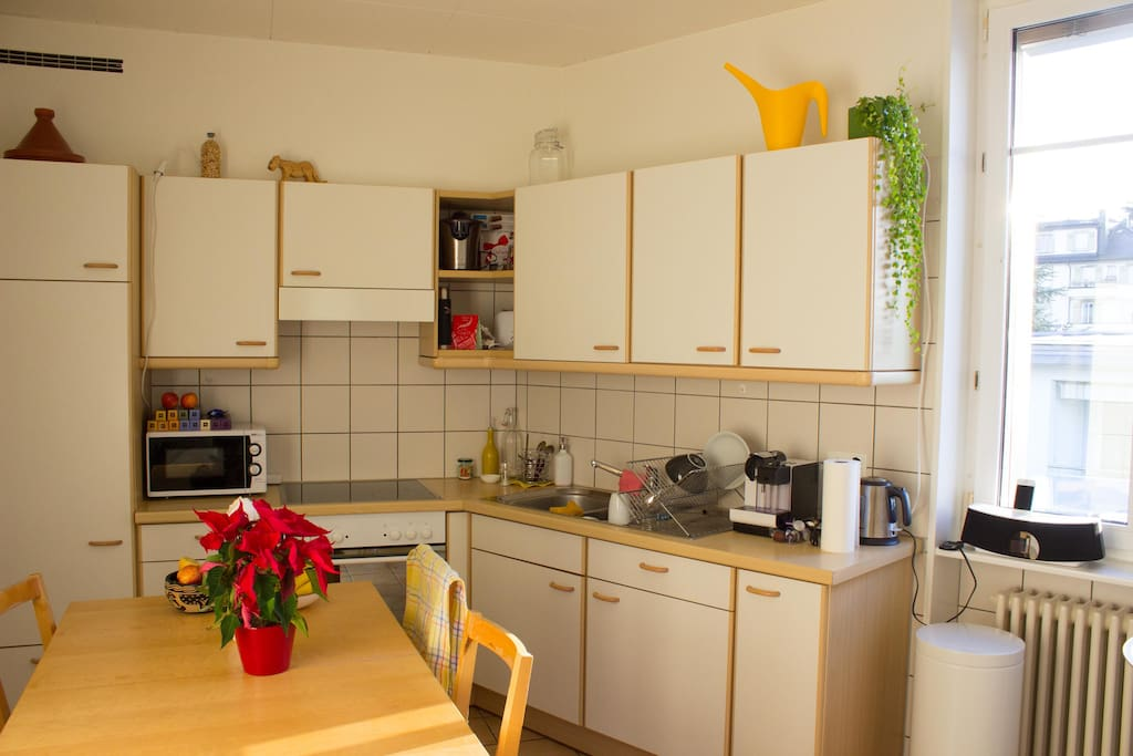 Well equipped kitchen, can be used by guest.