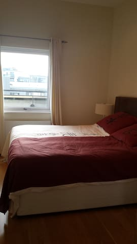 Stylish room & bathroom in Dundrum - Dundrum - Apartemen
