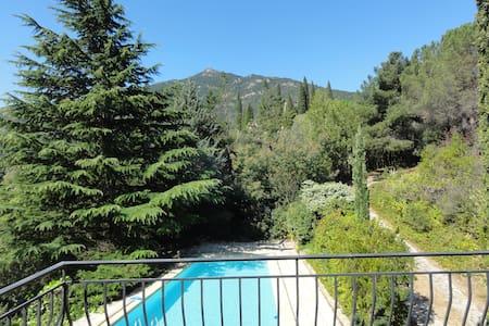 Maison au coeur du parc naturel du Haut Languedoc - Vieussan