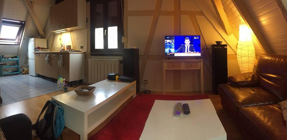 Duplex 80 M2 proche Strasbourg, jardin barbecue - Schiltigheim - Apartemen
