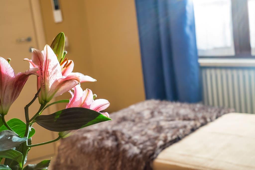 Camera singola o matrimoniale piccola con letto da ½ situata a piano terra, estremamente accogliente, arredata con materiali caldi e pregiati personalizzata con autentici oggetti  scelti uno ad uno con esperienza.