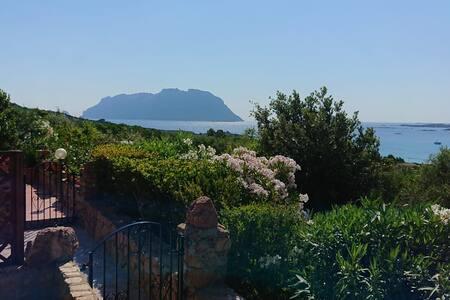 Casa Gianna vista Tavolara