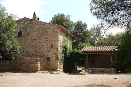 Casa Rural rodeada de Viñedos - Huis