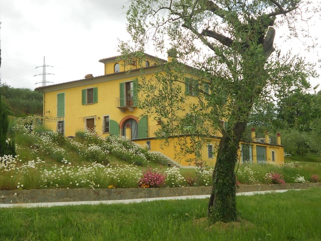 CAMPANO LUXURY FARMHOUSE IN COLLODI WITH JACUZZI - Collodi - Villa