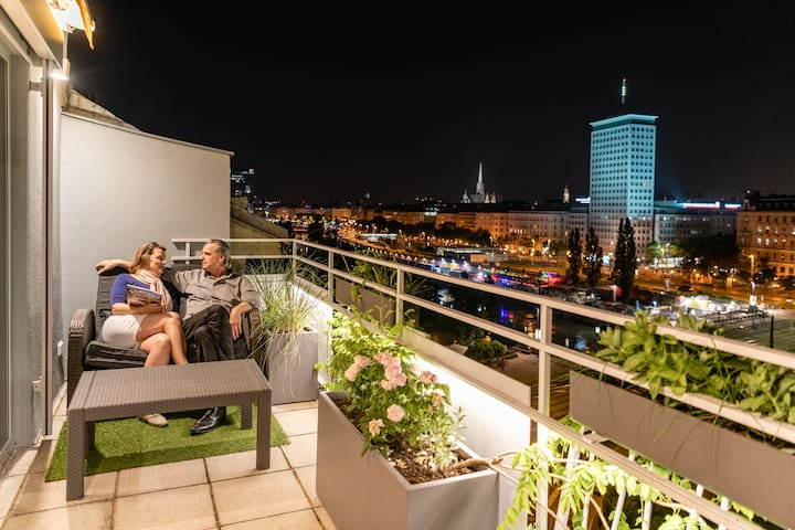 Vienna Ring View