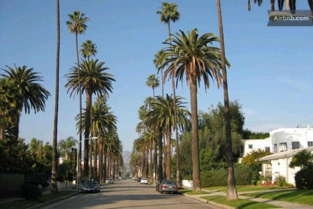 This is your Beverly Hills street, you will be living on this Beverly Hills street