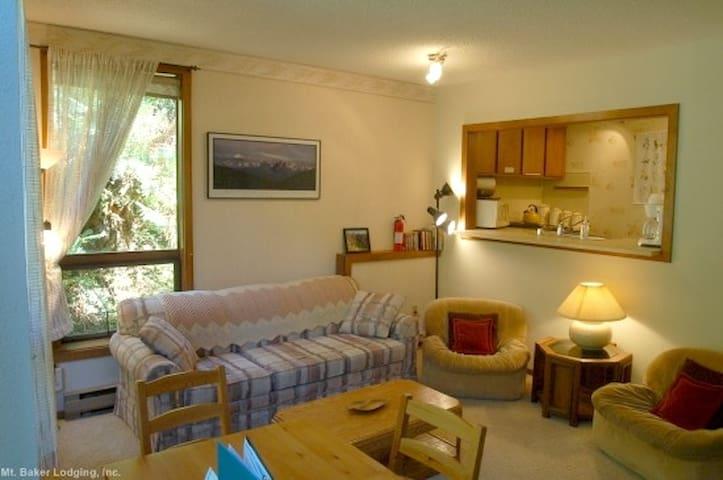 #91 - Snowater Condo - Glacier - Apartment