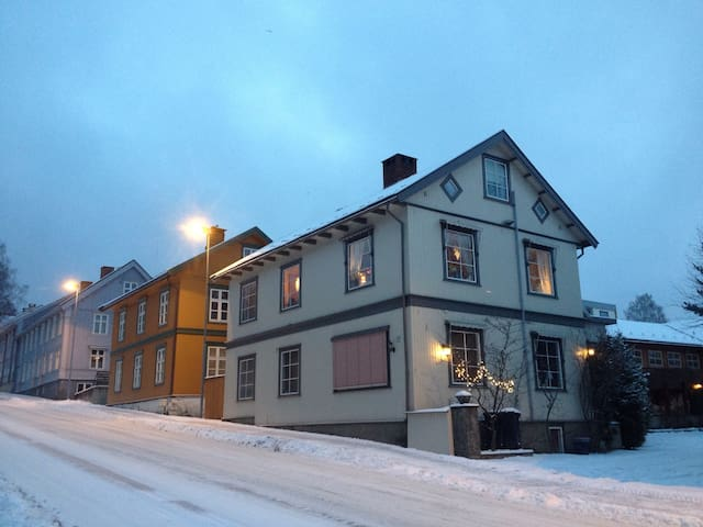 Artistic city center loft - Lillehammer - Loft