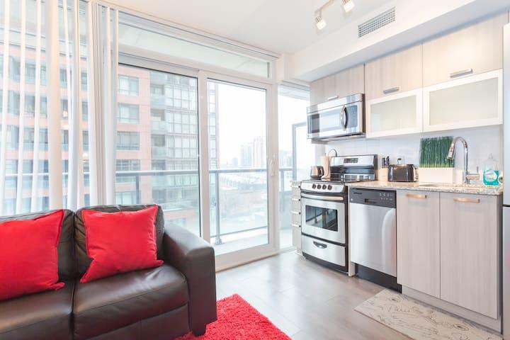 Brand New Condo in Downtown Toronto - Toronto - Apartment