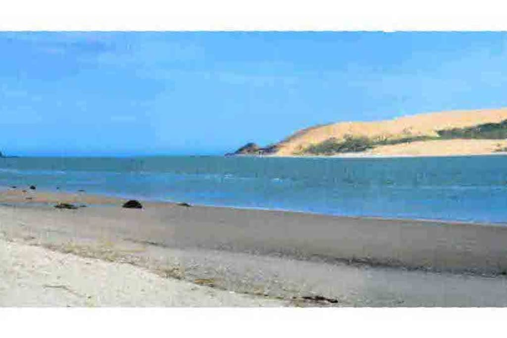 View of Hokianga Harbour safe for swimming