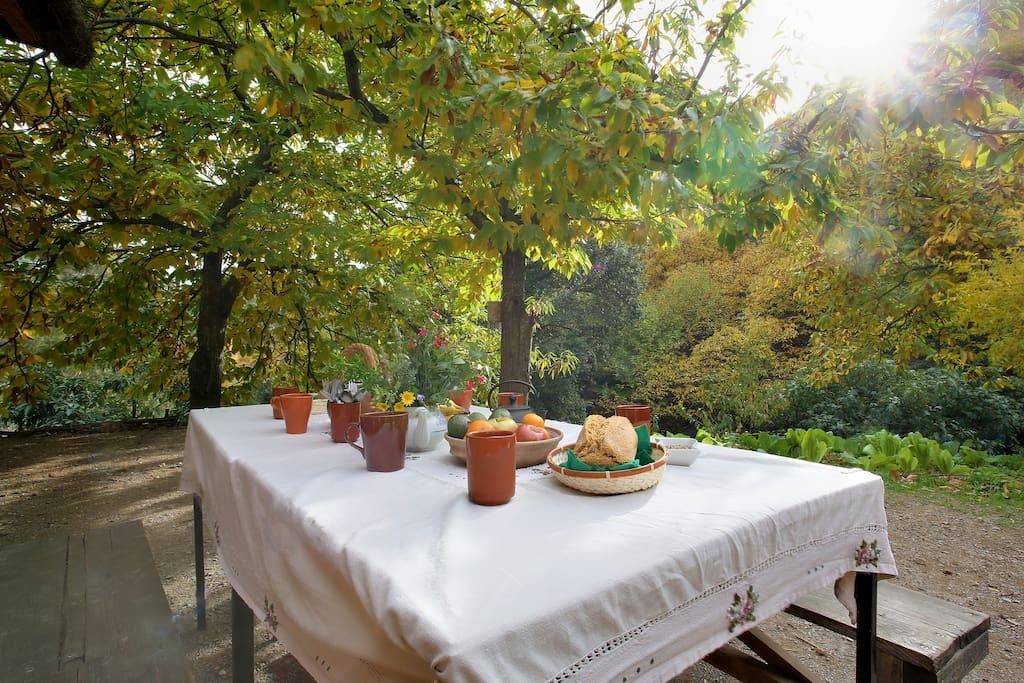 Servicio de restaurante con alimentos ecológicos y vegetarianos . Precios menús: 5€ desayuno, 10€ almuerzo y 10€ cena.