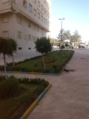 Bel appartement au coeur de Tanger