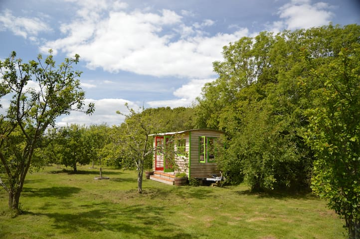 A rustic comfortable cabin in a beautiful orchard