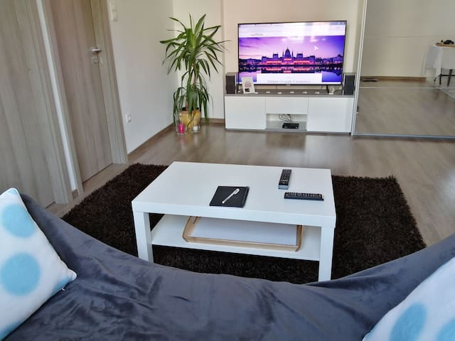 Brand new renovated home in Budapest