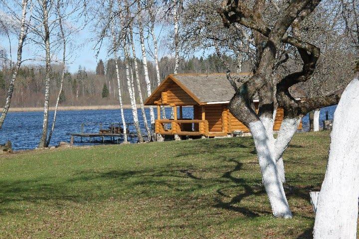 Cozy cabin by the lake in ecological farm Kemešys