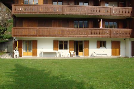 Ground floor flat. Sleeps 6 - Château-d'Oex - Apartment