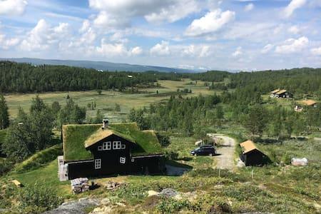 Flott hytte på fjellet i Ål, Hallingdal, Liatoppen