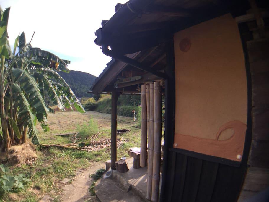 南はパ〜っと開けていて、畑しかありません。バナナの木が大きく成長しました!