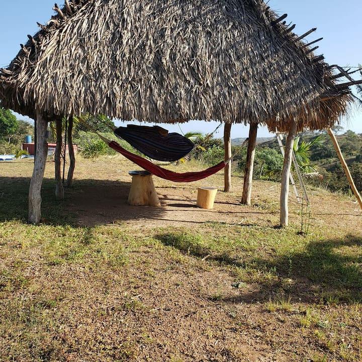 Camping naturel  proche des plages du pacifique