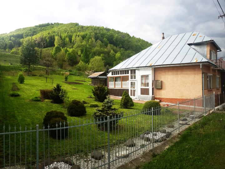 Holiday house with a garden - Osrblie (Low Tatras)