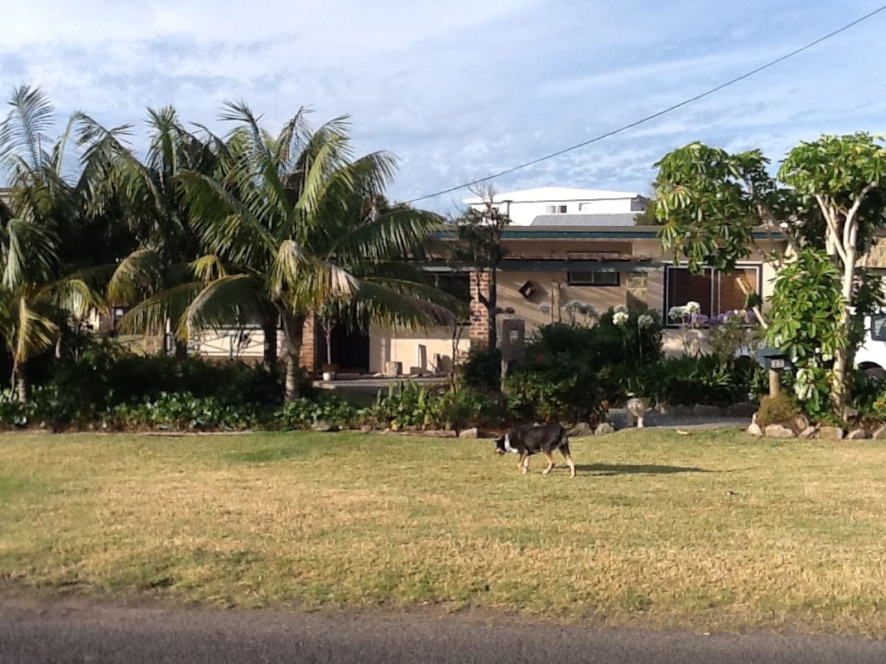 View of the front garden & house.