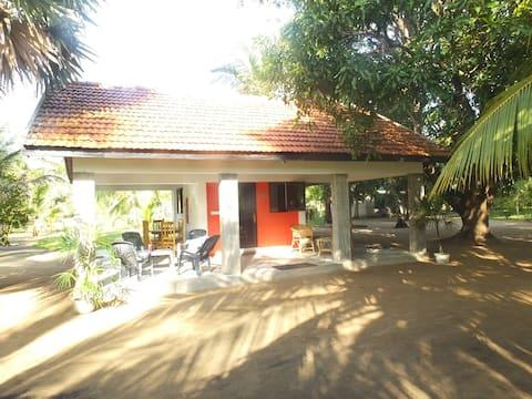 Coconut estate Bungalows/Chalets