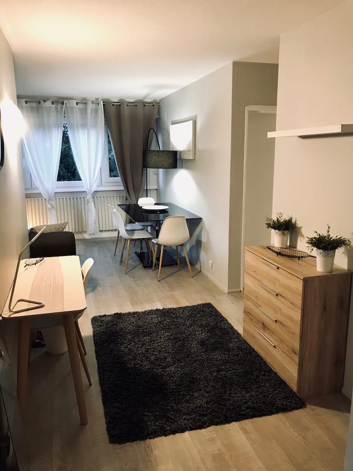 Appartement, confortable, aux portes de Genève