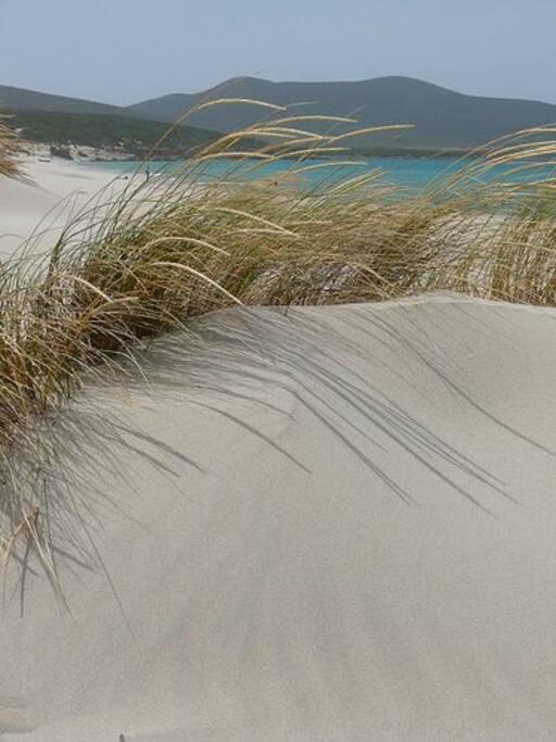 dune di portopino