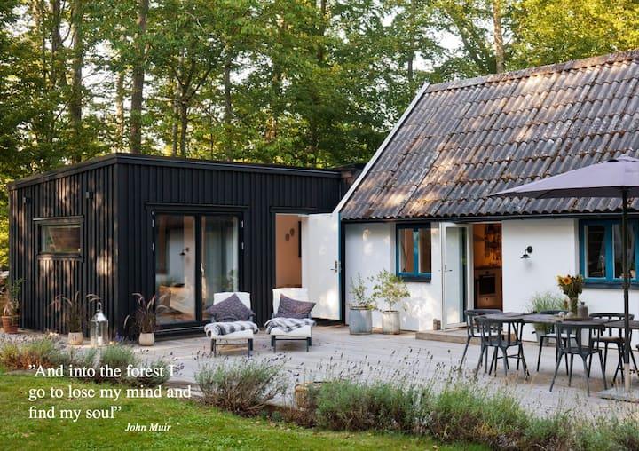 Modern house on Österlen