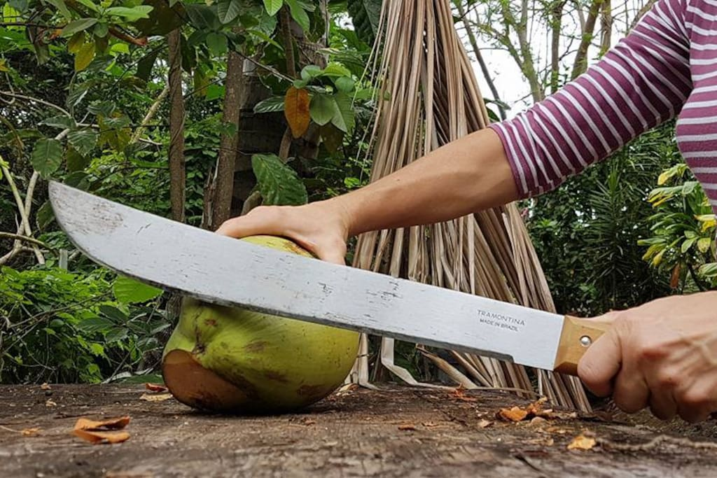 Chop your own coconut and drink fresh coconut milk
