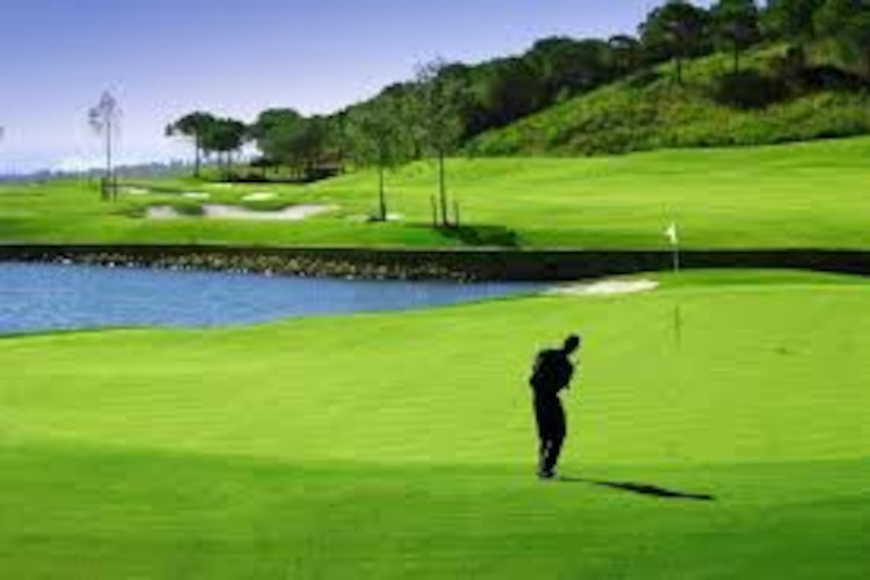 30 golf courses