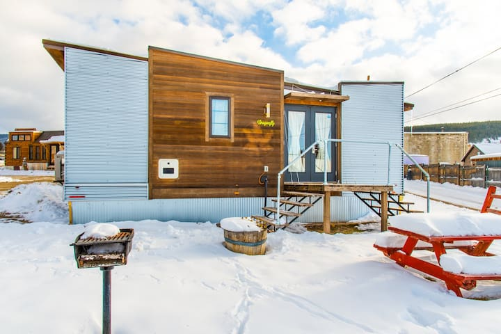 Downtown Leadville - Tiny house dragonfly for your mountain adventure
