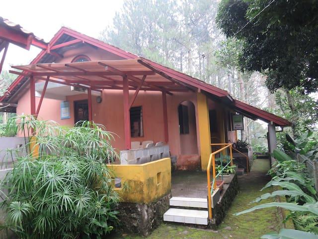 Argo Mayang 1 (Eco Park)