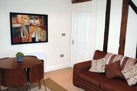 Central apartment, Brecon - Brecon - Pis