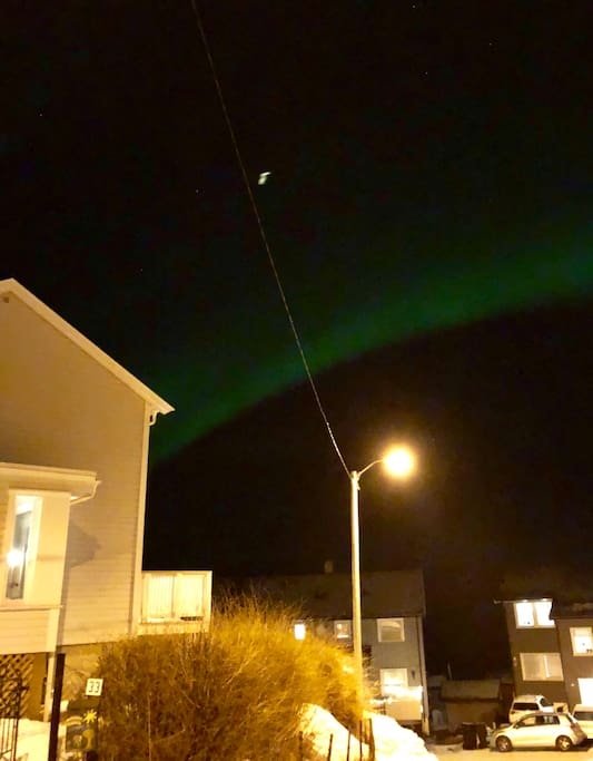 Northern lights outside my house.