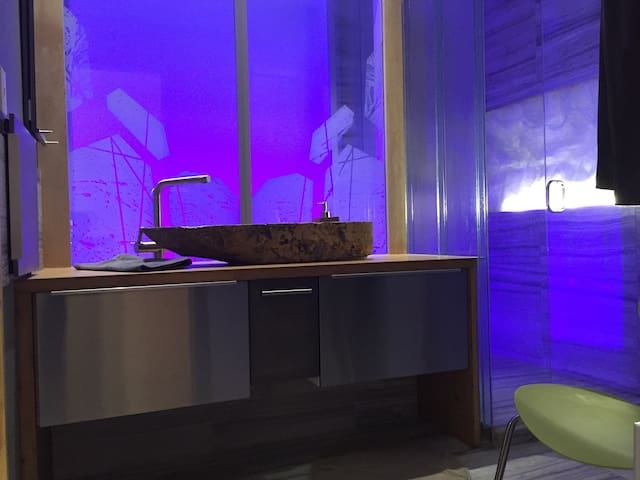 Sunny design apartment - Rosemont - 2 bd - Montréal - Apartment