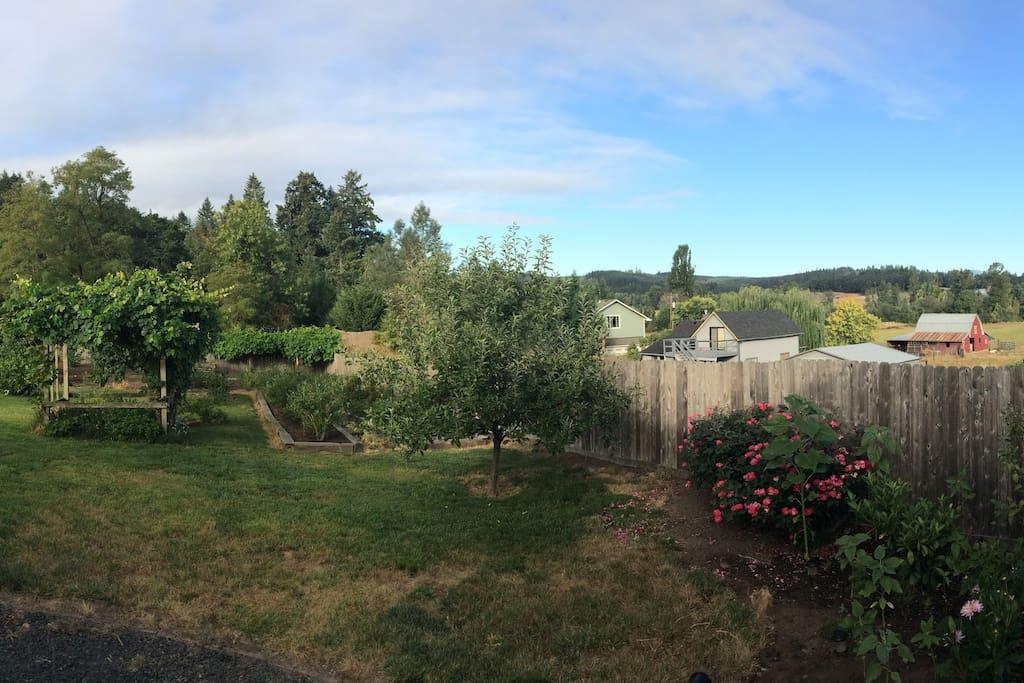 Back yard overlooks the coast range.
