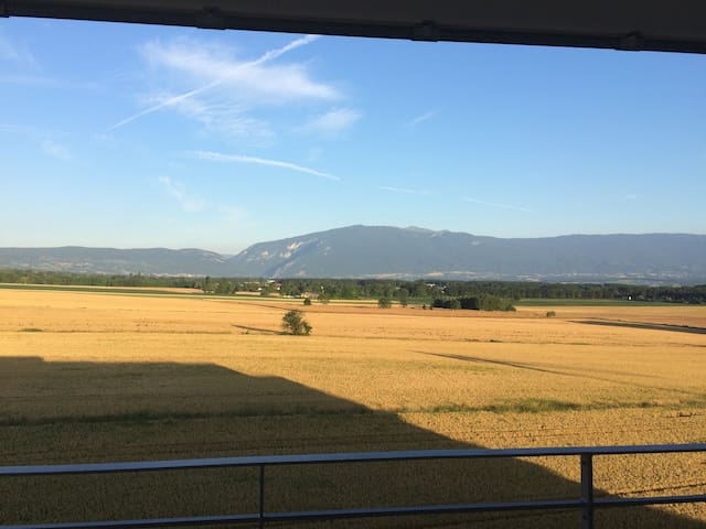 Nice falt close to Geneva and ski stations - Viry